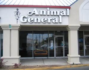 animal-general