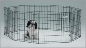dog-exercise-pen