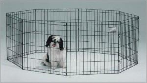 dog-exercise-pen