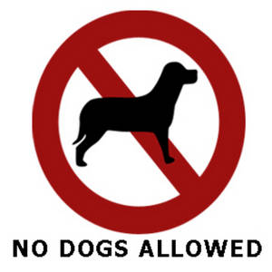 no-pets-allowed