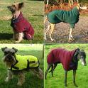 dogs-coats