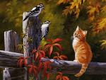 cats-and-birds