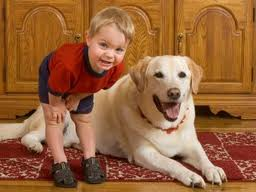 dogs-and-children