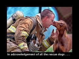 fireman-dog