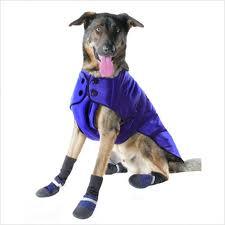 dog-coat-boots