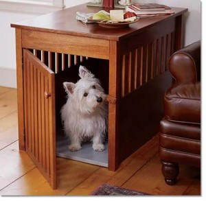 dog-crate-3
