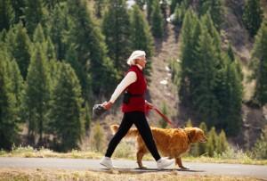 dog-short-leash