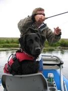 dog-fishing