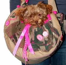 TRENDY PET CARRIER