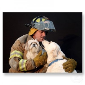 Firemen dog