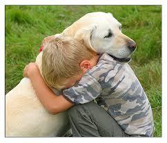 DOG FOUND 2