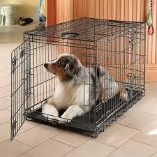 puppycrate