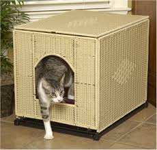 catbox
