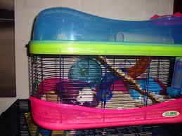 hamstercage