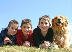 kidsdogs