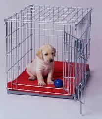 puppycrate.com