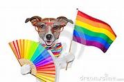 gaypridedogs