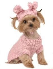 dogsty;e