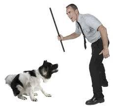dogthreatened