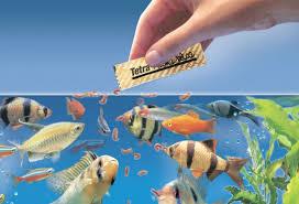 fishfiid