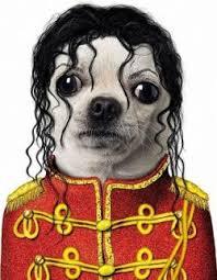 michaeldog