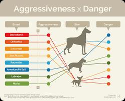 aggressive-3