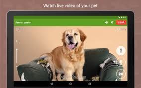 dog-monitor