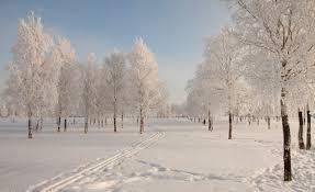 snowy-day