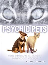 pysychicpets