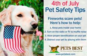 4th-pet-safety-tips